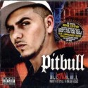 "Pitbull ""Money Is Still A Major Issue"" - DVD + CD Usato"
